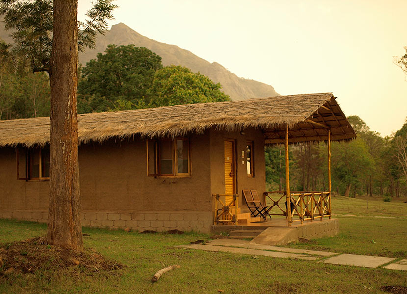 Masinagudi Accommodation Tree House And Cottages Jungle